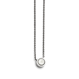 Stainless Steel Polished Bezel Mother of Pearl Necklace
