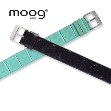 Moog Time to Change Bands