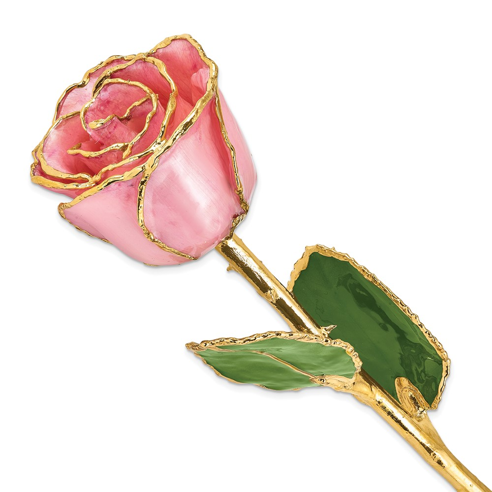 Lacquer Dipped Gold Trim Pink Pearl Rose