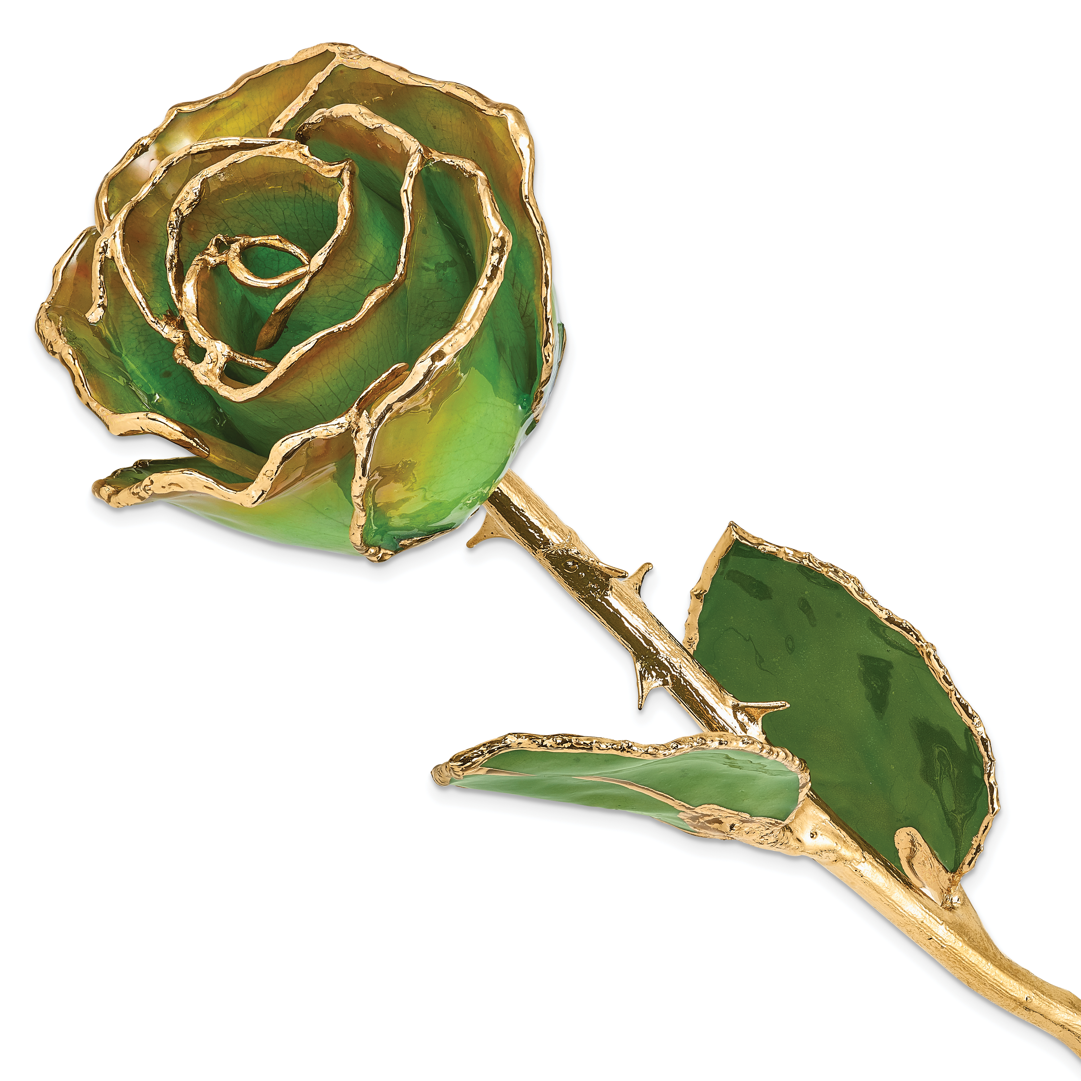 Flowers /& Leaves Lacquer Dipped 24K Gold Trim Peridot /& Topaz Rose
